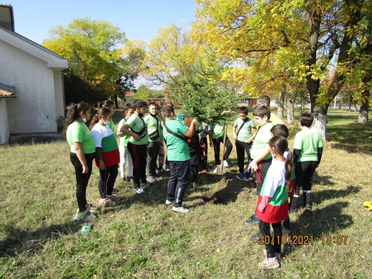 """Учениците от IV """"в"""" клас на ОУ """"Св. Паисий Хлендарски"""" – гр. Елхово посадиха дърво в двора на училището"""